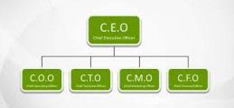 CFO ne demek? CFO ne iş yapar?