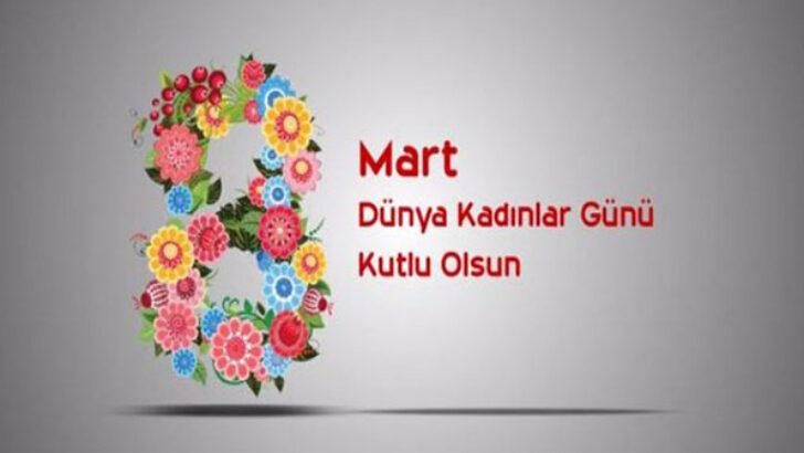 TÜRKİYE'DE 8 MART DÜNYA KADINLAR GÜNÜ KUTLAMASI