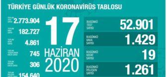 17 Haziran 2020 Türkiye Koronavirüs Tablosu