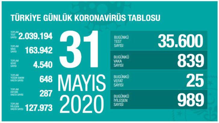31 Mayıs 2020 Türkiye Koronavirüs Tablosu