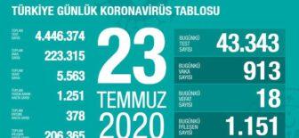 23 Temmuz 2020 Türkiye Koronavirüs Tablosu