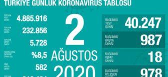 02 Ağustos 2020 Koronavirüs Tablosu