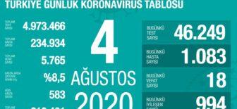 04 Ağustos 2020 Koronavirüs Tablosu