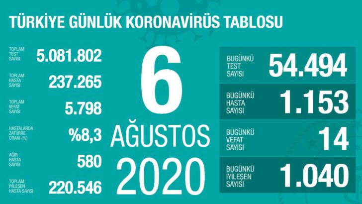 06 Ağustos 2020 Koronavirüs Tablosu