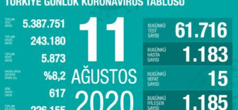 11 Ağustos 2020 Koronavirüs Tablosu