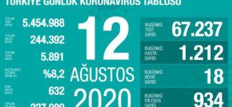 12 Ağustos 2020 Koronavirüs Tablosu