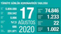 17 Ağustos 2020 Koronavirüs Tablosu