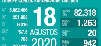 18 Ağustos 2020 Koronavirüs Tablosu