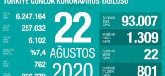 22 Ağustos 2020 Koronavirüs Tablosu