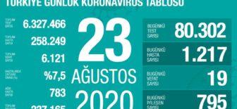23 Ağustos 2020 Koronavirüs Tablosu