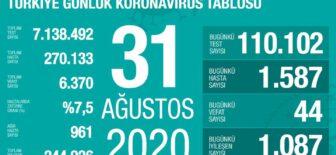 31 Ağustos 2020 Koronavirüs Tablosu
