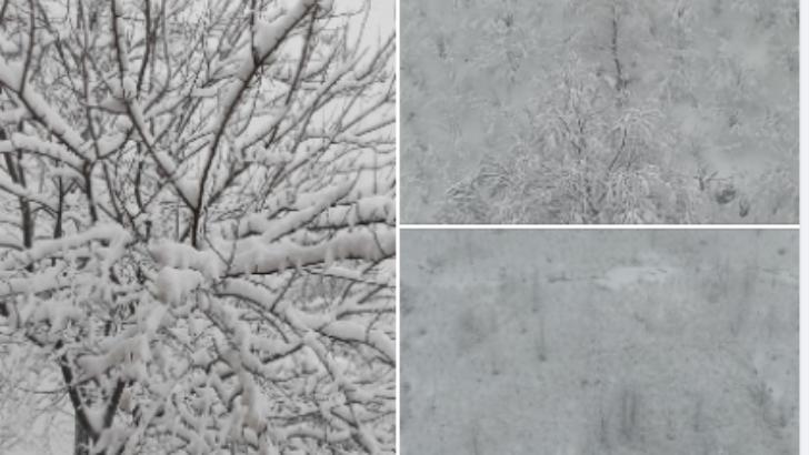 Kar Hakkında Çok Az Kişinin Bildiği Enteresan Bilgiler
