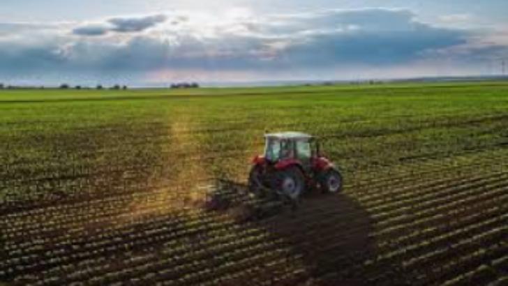 Türkiye'de Tarımsal İstihdam