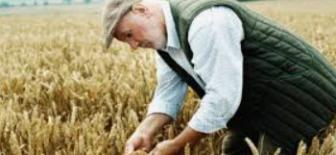 Ekonomik anlamda tarım sektörünün karşı karşıya kaldığı temel sorunlar