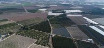 Türkiye Ekonomisinde Hizmetler Sektörünün Tanım ve Kapsamı