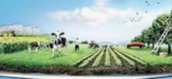 Türk Tarım Sektörünün Çatı Kuruluşları, Arazi Yapısı ve İşletme Büyüklüğü