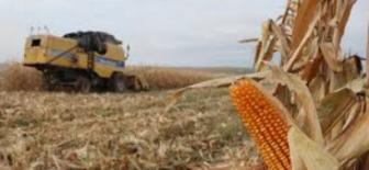 Tarım sektörünün ekonomik olarak katma değer yaratma kapasitesini etkileyen faktörler