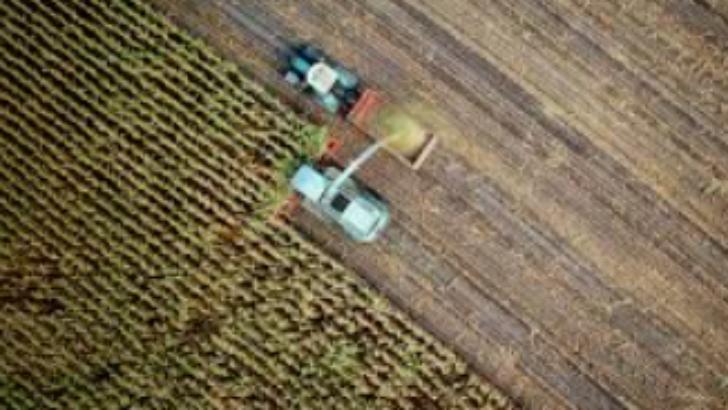 Türk Tarım Sektörünün Üretim Yapısı ve DağılımıTürk Tarım Sektörünün Üretim Yapısı ve Dağılımı